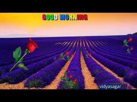 Good morning | good video status