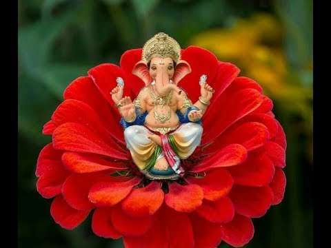Ganpati bappa whatsapp status | ganesh ji | ganesh chaturthi special | whatsapp status song