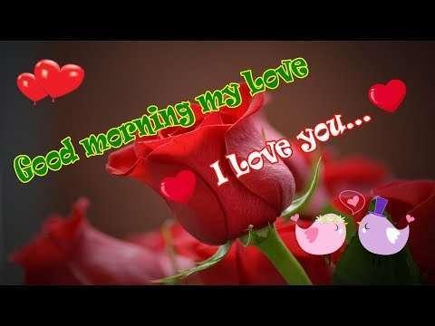English morning status | love morning english status video | english morning status | good morning love you