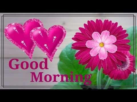 New romantic good morning | whatsapp status | New good morning status